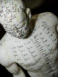 Concepto de la acupuntura imagenes de archivo