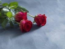 Concepto de la boda con las rosas rojas frescas en fondo azul de la pizarra Imagenes de archivo