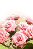 Concepto de la boda y de la tarjeta del día de San Valentín con muchas rosas rosadas Fotografía de archivo libre de regalías
