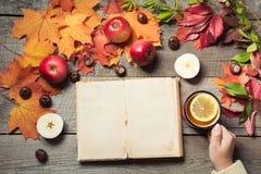 Concepto de la caída Álbum del vintage con el espacio para el texto y la taza de té a disposición, decoración de las hojas de oto Imagen de archivo libre de regalías