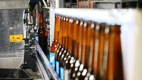 Concepto de la cervecería Fábrica de la cerveza Línea de embotellamiento automática de la cerveza Cola de botellas llenadas lista almacen de metraje de vídeo