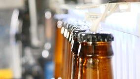 Concepto de la cervecería Fábrica de la cerveza Línea de embotellamiento automática de la cerveza Primer tirado de la cola de bot almacen de metraje de vídeo