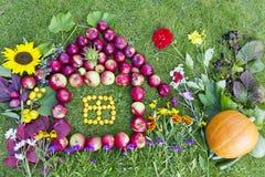 Concepto de la cosecha del otoño Imagen de archivo libre de regalías