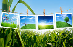 Concepto de la ecología Fotos de archivo