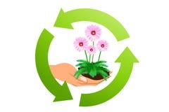 Concepto de la ecología Imágenes de archivo libres de regalías