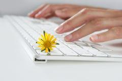 Concepto de la ecología de manos de la mujer que pulsan el teclado imágenes de archivo libres de regalías