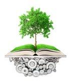 Concepto de la educación El árbol del conocimiento crece de ilustración del vector