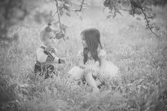 Concepto de la felicidad de los niños de la niñez del niño Los niños se sientan debajo de manzano en parque del verano imagen de archivo