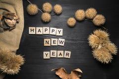 Concepto de la Feliz Año Nuevo con la decoración natural de la Navidad Foto de archivo libre de regalías