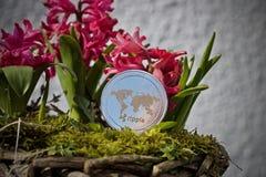 Concepto de la flor de la moneda de la ondulación Fotos de archivo