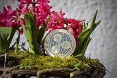 Concepto de la flor de la moneda de la ondulación Foto de archivo libre de regalías
