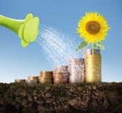 Concepto de la inversión, acción del gráfico de las monedas Imagen de archivo
