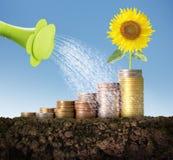 Concepto de la inversión, acción del gráfico de las monedas Fotografía de archivo