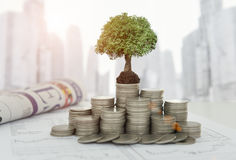 Concepto de la inversión del crecimiento Imagen de archivo libre de regalías