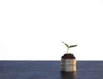 Concepto de la inversión, mercado de acción del gráfico de las monedas Fotos de archivo