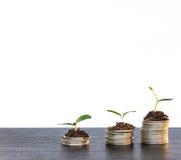 Concepto de la inversión, mercado de acción del gráfico de las monedas Foto de archivo libre de regalías