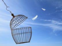 Concepto de la libertad Foto de archivo
