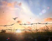 Concepto de la libertad fotos de archivo