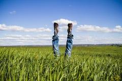 Concepto de la libertad y de la alegría, hombre con los vaqueros que mienten en campo de trigo, Imagen de archivo libre de regalías