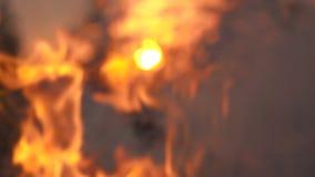 Concepto de la llama del fuego de la cámara lenta almacen de video