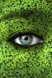 Concepto de la madre naturaleza - fondo de la ecología Fotografía de archivo libre de regalías