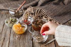 Concepto de la medicina alternativa Fotografía de archivo libre de regalías