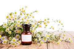 Concepto de la medicina herbaria - botella con la manzanilla en la tabla de madera Fotos de archivo