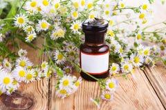 Concepto de la medicina herbaria - botella con la manzanilla en la tabla de madera Imagenes de archivo