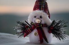 Concepto de la Navidad del Año Nuevo El muñeco de nieve se coloca en nieve con el fondo borroso de la naturaleza Muñeco de nieve  Fotografía de archivo libre de regalías
