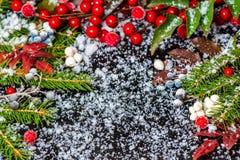 Concepto de la Navidad del invierno de ramas, de hojas del rojo y de b imperecederos Fotografía de archivo