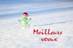 Concepto de la Navidad Muñeco de nieve de cristal en la nieve, con el voeux de Meilleurs de la frase Imágenes de archivo libres de regalías