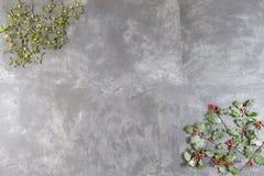 Concepto de la Navidad withholly y rama roja del muérdago de la suerte de la baya en esquina del fondo negro de la pizarra Imagen de archivo libre de regalías