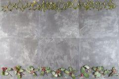 Concepto de la Navidad withholly y rama roja del muérdago de la suerte de la baya en fondo negro de la pizarra Fotografía de archivo