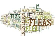 Concepto de la nube de la pulga y de Tick Season Protect Pets Word Imagenes de archivo