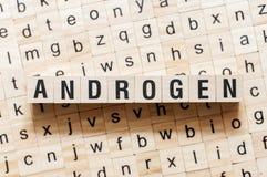 Concepto de la palabra del andrógeno en los cubos imagen de archivo