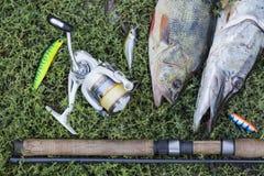 Concepto de la pesca con la barra de giro, el carrete, los pescados y los señuelos en hierba verde Imagen de archivo