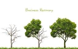 Concepto de la recuperación de negocio Fotografía de archivo