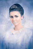 Concepto de la reina de la nieve Fotografía de archivo libre de regalías