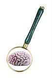 Concepto de la salud mental Foto de archivo libre de regalías