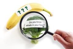Concepto de la seguridad alimentaria Imagen de archivo libre de regalías