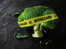 Concepto de la seguridad alimentaria o de la contaminación Imagen de archivo libre de regalías