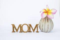 Concepto de la tarjeta del día del ` s de la madre Imagenes de archivo