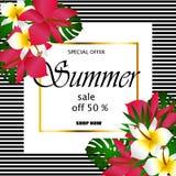 Concepto de la venta del verano