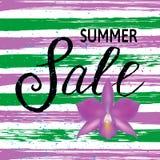 Concepto de la venta del verano Fondo del verano con la flor libre illustration