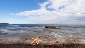 Concepto de las vacaciones de verano, estrella de mar en el piso de madera viejo, lapso de tiempo almacen de metraje de vídeo