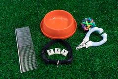 Concepto de los accesorios del animal doméstico en fondo de la hierba Imagen de archivo