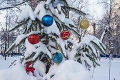 Concepto de Navidad Fotografía de archivo libre de regalías
