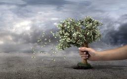 Concepto de pérdida su dinero Foto de archivo libre de regalías