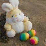 Concepto de Pascua, conejo del peluche con los huevos coloreados en la playa, VAC Foto de archivo libre de regalías
