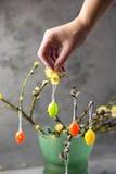 Concepto de Pascua Huevos coloreados tenencia de la muchacha Willow Branches fotos de archivo